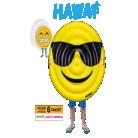 [BIM] Emoji Deniz Yatağı 85.00TL - 14 Haziran 2019
